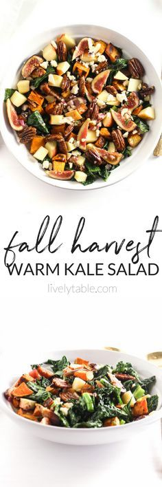 This Fall Harvest Warm Kale Salad is filled with all of the flavors of fall in a warm, delicious salad that you'll enjoy all season long! (#glutenfree, #vegetarian, #vegan option) |#kalesalad #fall| via livelytable.com