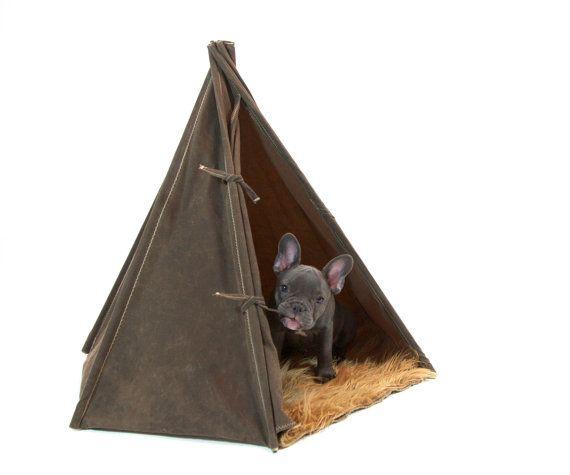 A true pup tent.