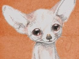 TITIRI a drawing of a fennec fox made with aqarell pencils