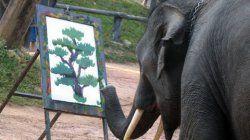 Азиатский слон в Тайском зоопарке рисует картины по 700$