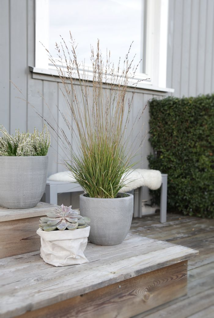 A single tall grass makes a statement in the right pot. Deck in Oslo, Norway.| Gardenista Photograph by Nina Holst of Stylizimo