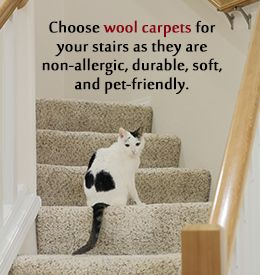 Tip to choose the best carpet for stairs