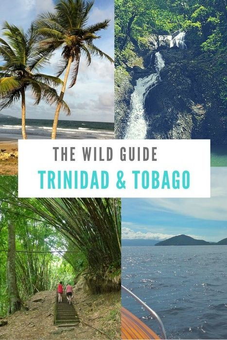 Explore authentic cuisine, pristine natural beauty and still-wild beaches in the dual nation of Trinidad and Tobago