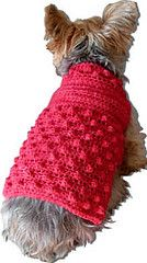 Raspberry Fool Crocheted Dog Sweater -- I made one for my puppy in (a much more manly shade of) green!