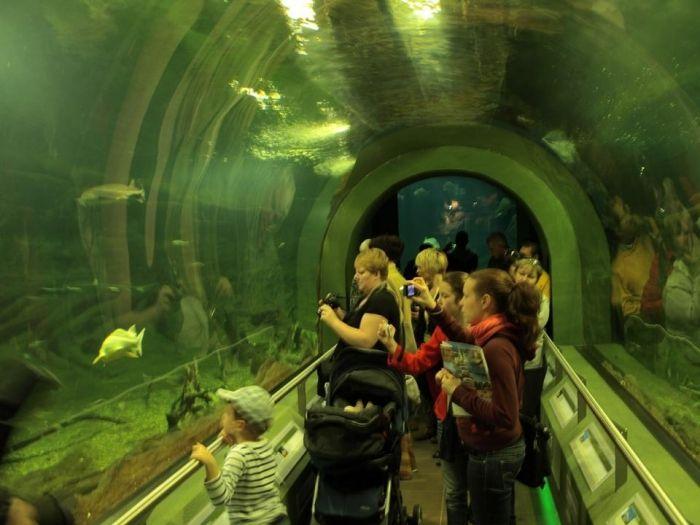 Az Ökocentrum turisztikai- és rendezvényközpont, amely egy helyen gyűjti össze és tárja látogatói elé a Tisza-tó és a Tisza-völgy természeti kincseit, bemutatva Magyarország második legnagyobb tavának gazdag élővilágát. Négyszintes látogatóközpontja 2.600