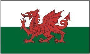 Wales Flag 3 x 5 Brand NEW 3x5 Welsh Dragon Flag by FI. $4.87. polyester. 3x5 Foot Polyester Wales Flag Welsh. 2 grommets. 3x5 Foot Polyester Wales Flag Welsh