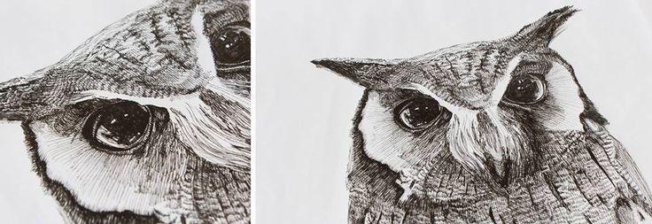 Lynn-Marie Cronje - Owl drawing - ink pen