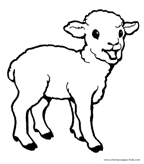 Best 25 Lamb template ideas on