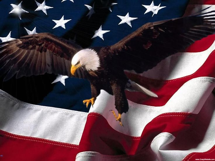 pictures of eagles with american flag | Eagle and American flag | Flag Wallpapers | HD Wallpapers For Free ...
