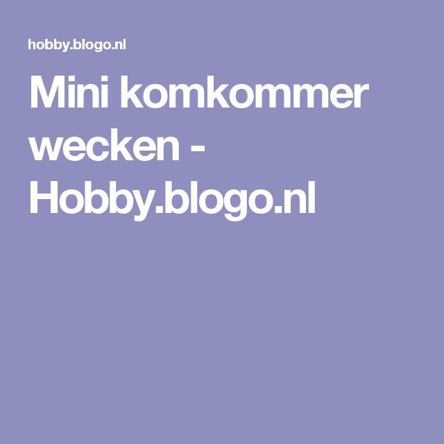 Mini komkommer wecken - Hobby.blogo.nl