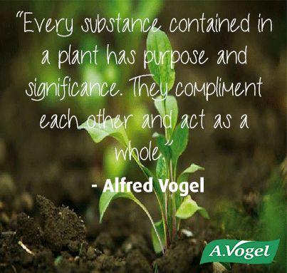 """""""Every substances contained in a plant has purpose and significance. They compliment each other and act as a whole."""" - A.Vogel"""