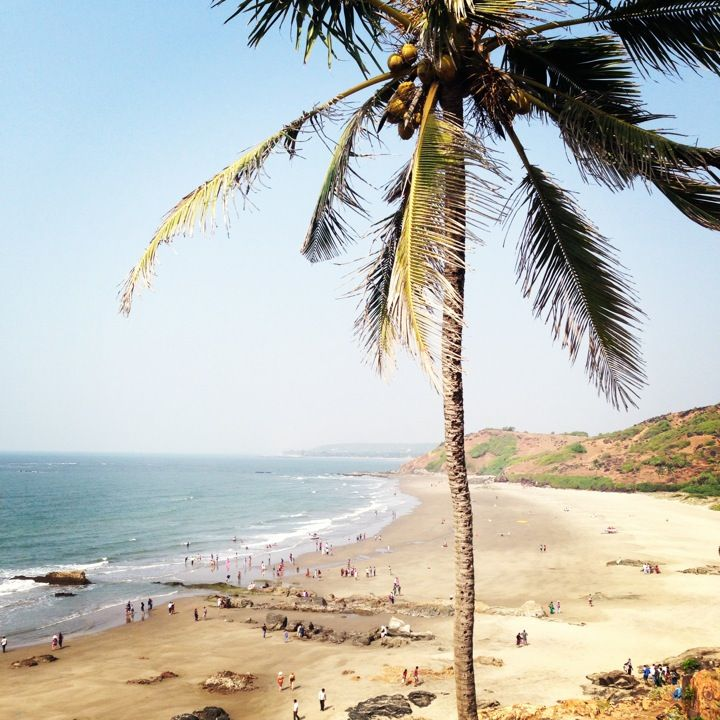 Best Places To Visit In Goa Lonely Planet: 35 Best Travel Plans Images On Pinterest