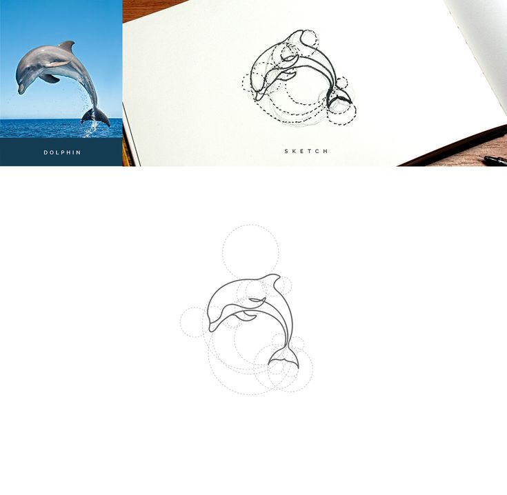 Wild Lines : Animal Logos Vol 1 on Behance