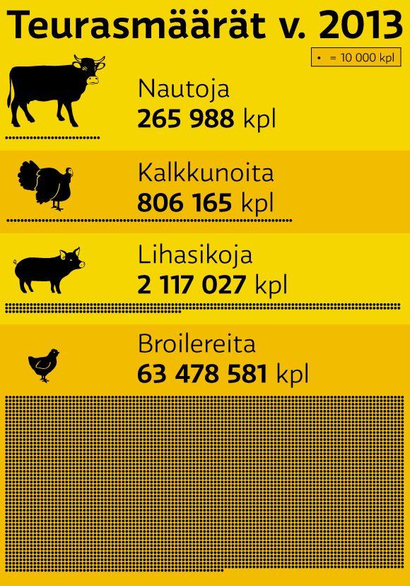 data vizualisation, infographic, illustration @ Stina Tuominen