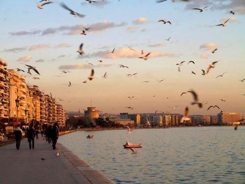birds, sunset, and bot εικόνα