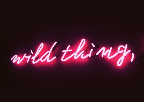Wild thing pink neon sign | Neon | Pinterest | Pink neon sign, Wild things  and Neon