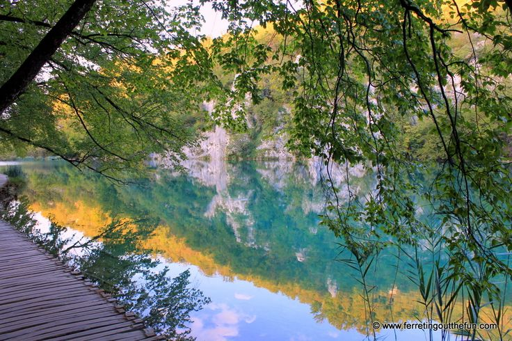 There are places in this world with natural landscapes so stunning that they don't seem real even when you are standing in them. Plitvice Lakes National Park in central Croatia is one of those magical places. Crystal clear water flows through a series of interconnected lakes formed through thousands of years of erosion and travertine deposits. Thanks to the water's rich mineral content, its color ranges from electric turquoise to deep emerald when it's not a mirror image of the sky. The…