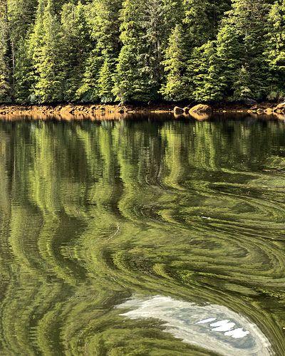 Alaska reflections - Get tips for #Alaska #Fishing Trips: http://www.thewondermap.com/alaska-fishing-trips/