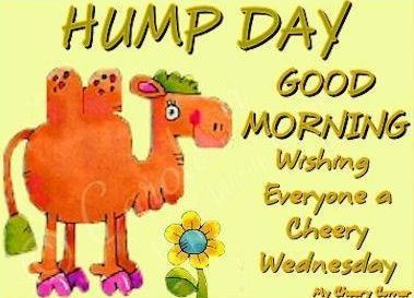 Good Morning Hump Day days of the week good morning wednesday humpday humpday quotes