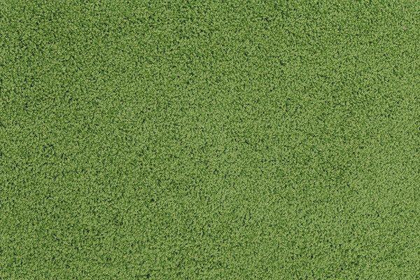 Modern Classroom Rug ~ Best ideas about grass carpet on pinterest artificial