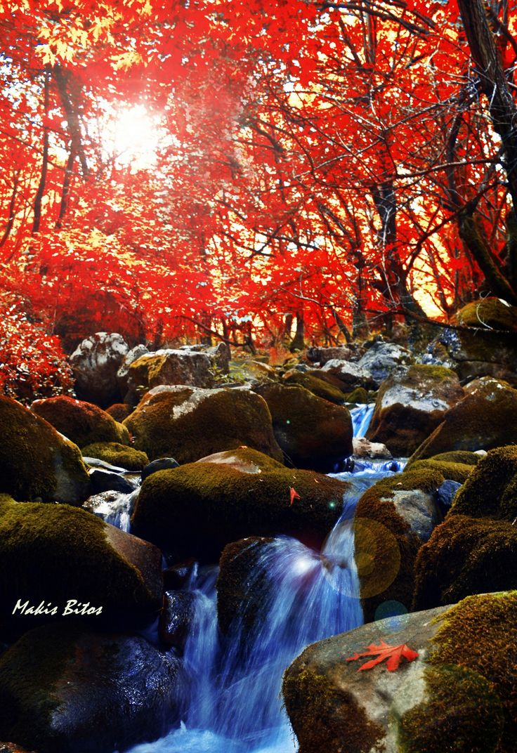 Welcome autumn.. by Makis Bitos on 500px