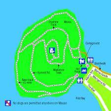 leisure island mount maunganui history - Google Search