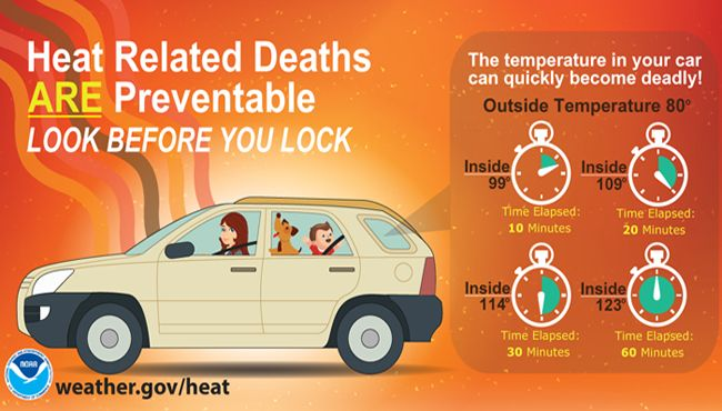 Heat related deaths are preventable: look before you lock for children, pets and others with limited mobility.  It takes just 10 minutes for a car to overheat when it 80 degrees outside.