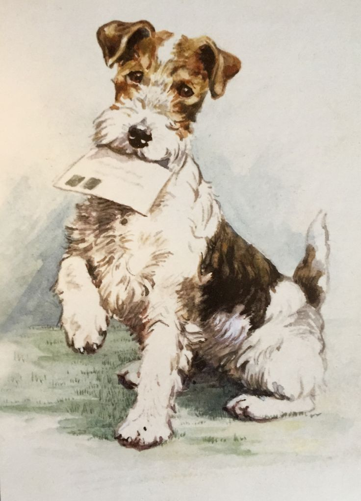 656 best WFT art images on Pinterest | Wire fox terriers, Dogs and ...