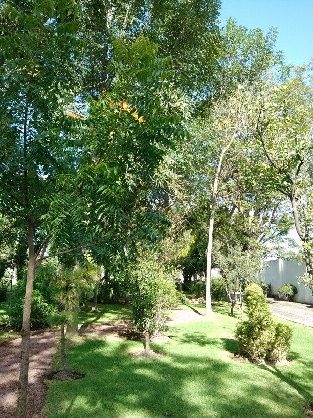 jardin para bodas/ jardin eventos/bodas/guadalajara www.quintaelrefugio.com.mx