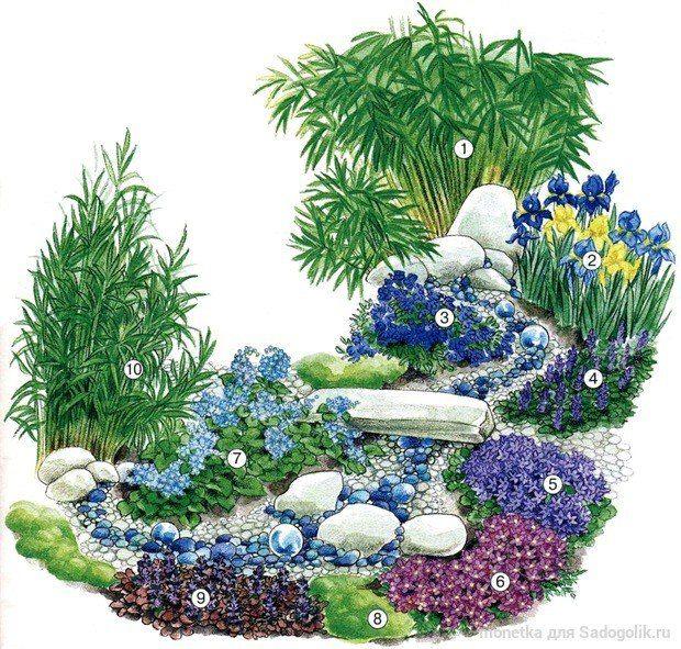 Схема цветника для сухого