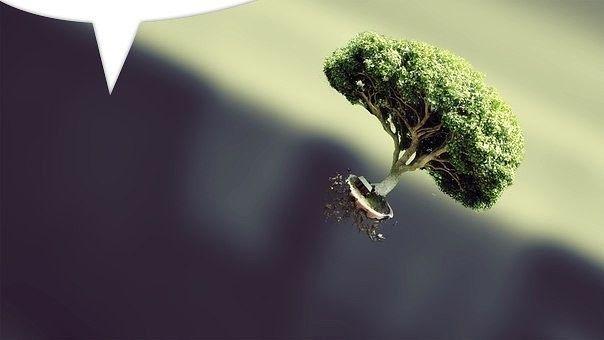 Лет через 20 вы больше будете жалеть о том, что вы не сделали, чем о том, что сделали. Поэтому поднимайте якоря и уплывайте из тихой гавани. Ловите попутный ветер в свои паруса. Пользуйтесь. Мечтайте. Делайте открытия.  Марк Твен #Лайф#Бизнес #коуч #IRINA #KANUNNIKOVA http://irina-kanunnikova.com