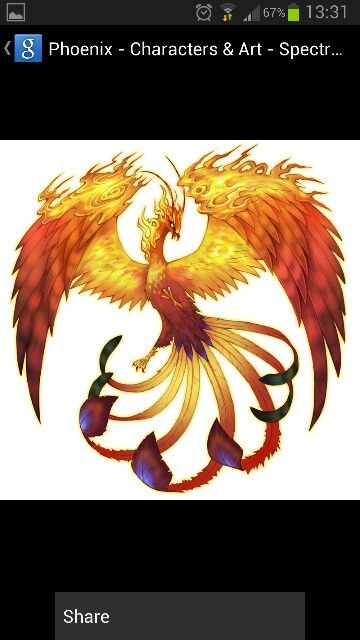 21 best phoenix tattoos ideas images on pinterest for Huma bird tattoo