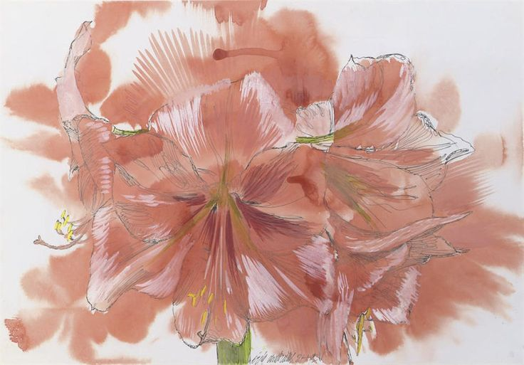 Erik Andriesse (Dutch, 1957-1993), Amaryllis, 25 January 1992. Watercolour, gouache and ink on paper, 32 x 45.5 cm.