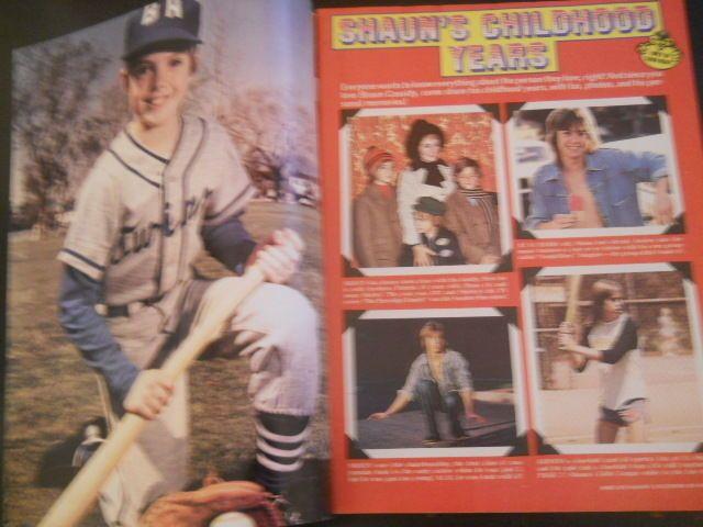 Shaun Cassidy, Star Wars, Farrah Fawcett - Tiger Beat Magazine 1977 in Books, Magazine Back Issues | eBay