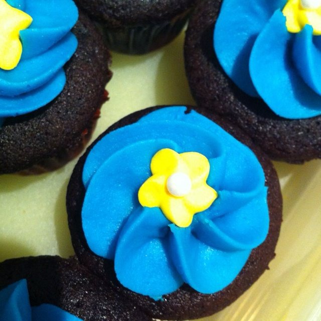 Mini chocolate Cupcakes for Australia biggest morning tea.