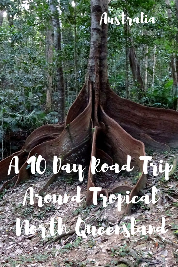 A 10 Day Road Trip Around Tropical North Queensland, Australia