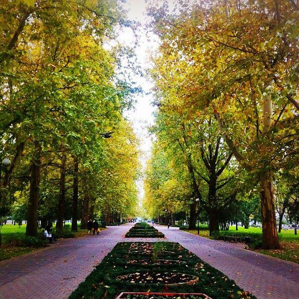 Красная улица , город Краснодар, Краснодарский край