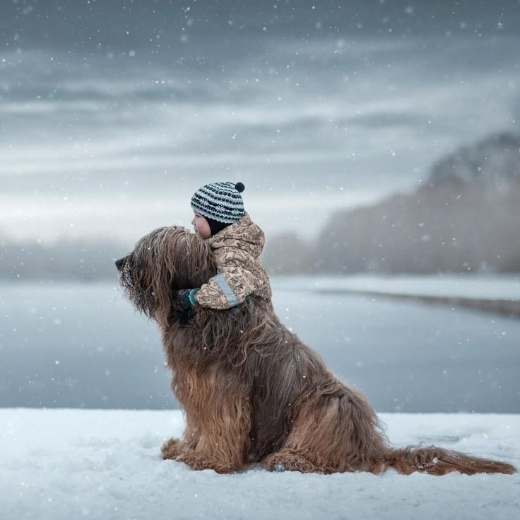 Dogs.....our best friends....