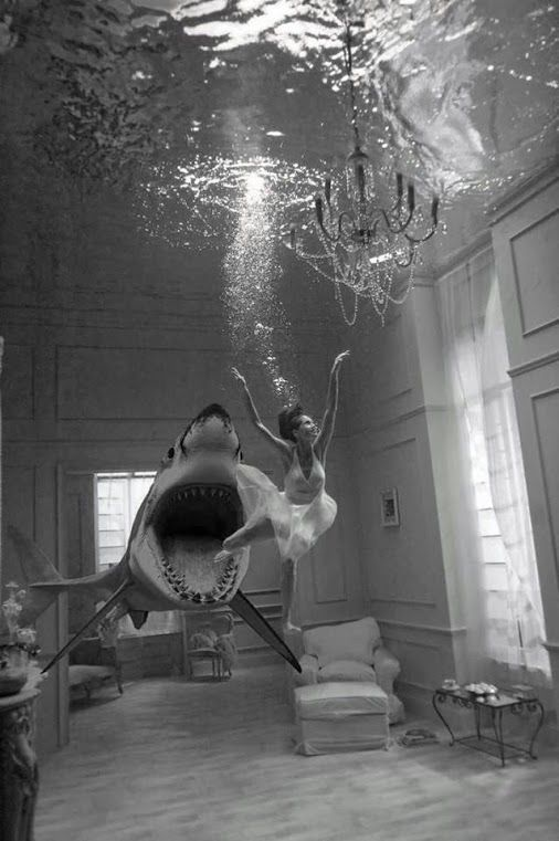 Cool underwater photo in a house. Not sure what this is about.