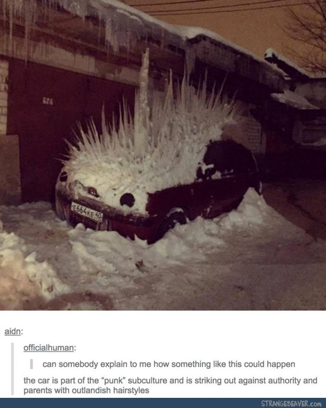 no. it's just a very rare sighting of the elusive Hedgehog Car