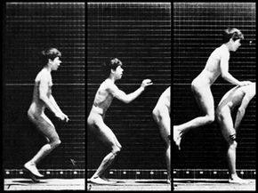 """EXCERPTS >