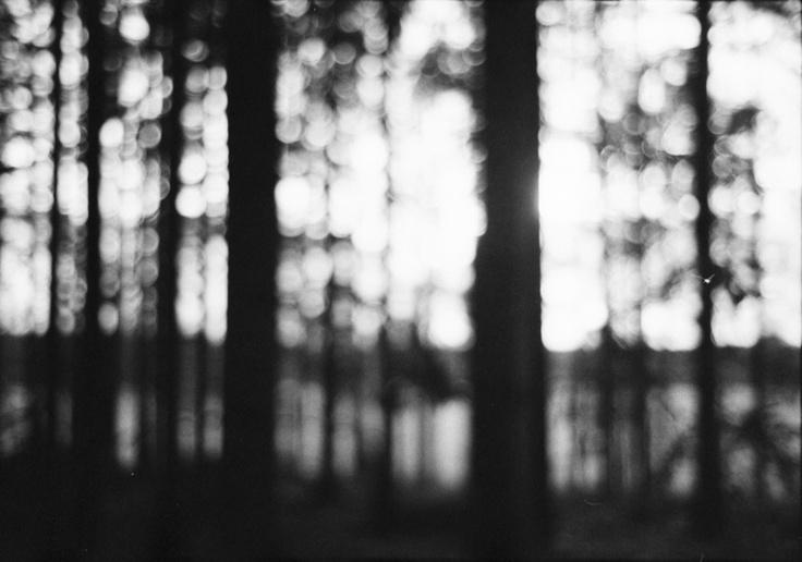 Buenaventura Marco Photography - sverige