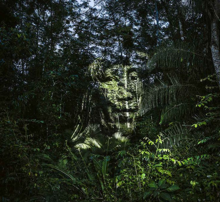 Members of a Brazilian Indigenous Tribe Projected Onto the Amazon Rainforest by Photographer Philippe Echarouxby