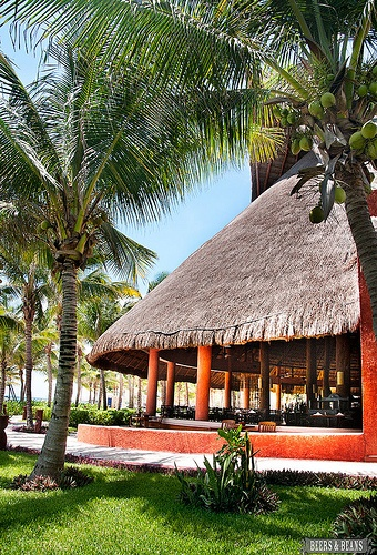 Mexico -it's so beautiful! via BeersandBeans.com: Mexico Place, Friends, Mexicans Adventure, Mexico I, Ahhh Mexico, Mexico Jetsettercurator, Beauty, Paradise, Bags