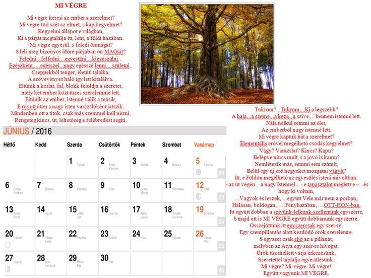 NAPtár hetedik oldal  Saját verseimből szerkesztett NAPtár a 216-os évre sok SZERetettel. :)