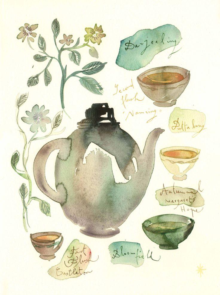 Darjeeling Tea by Lucile Prache