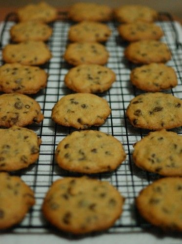 Easy Chocolate Chip Cookies - Just made these cookies. They are VERY good. Cruncy on the outside and squishy in the middle. Delicious!