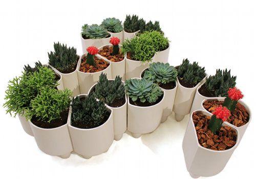 Great planters: Elliot Modular, Green Thumb, Succulent, Garden Ideas, Plants, Modular Planters, Design