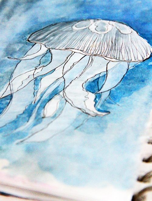 Like the idea of monochromatic aquatic drawings with watercolor