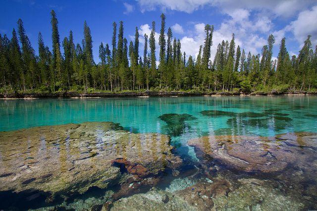 Natural aquarium, Isle of pine, New-caledonia.